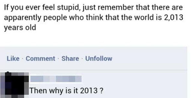 There Is So Much Stupidity in the World