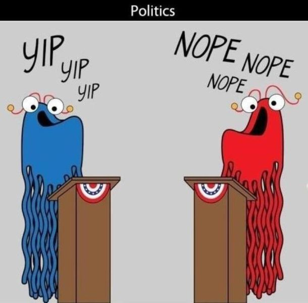 Politics and Politicians in a Nutshell