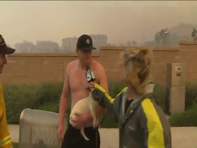 Shirtless Man Asks Reporter on Date during Live Wildfire Report