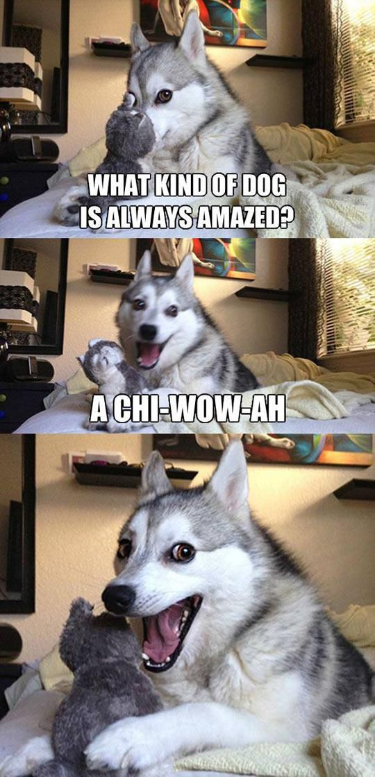 Puns to Make You Grin and Giggle