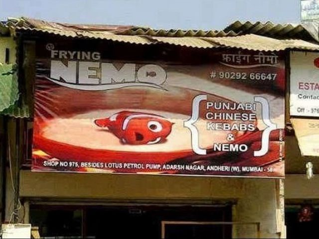 Weird Things You Will Only See in India