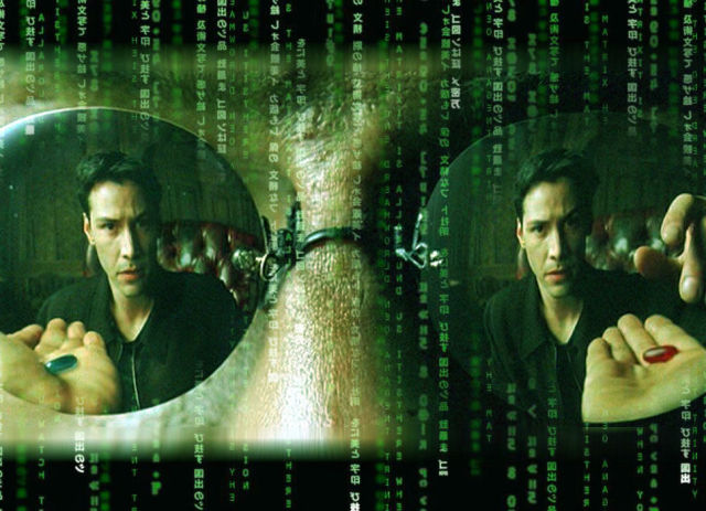 Fun Facts about the Matrix with Cool Pics from the Movie
