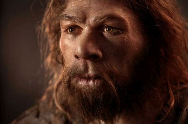 Lifelike Hominid Reconstructions That Are a Look at the Past
