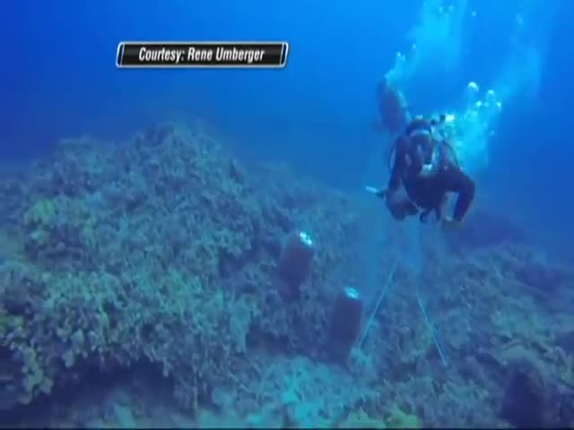 Diver Asaulted Underwater by Another Diver