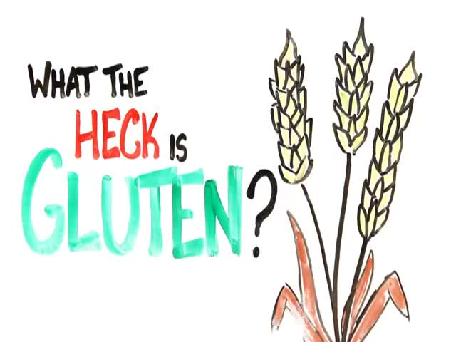So, What the Heck Is Gluten?