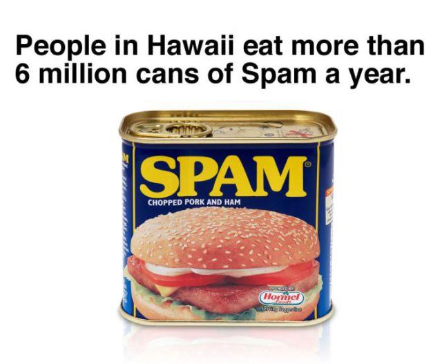 A Little Bit of Fun Trivia about Hawaii