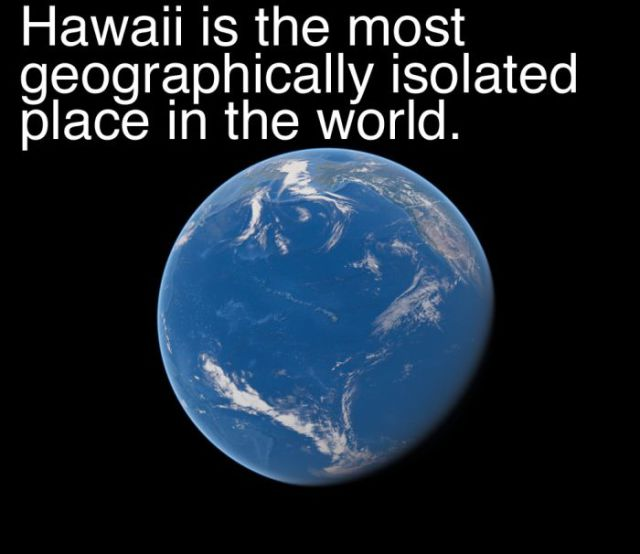 A Little Bit of Fun Trivia about Hawaii