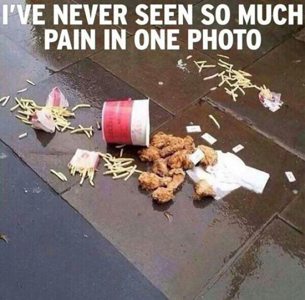 We've All Had Bad Days Like This!