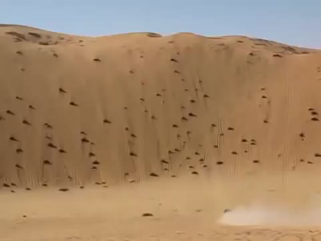 Super Pick-up Truck vs Giant Sand Dune  (VIDEO)