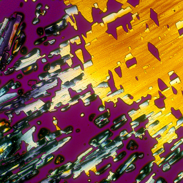 A Few Popular Alcoholic Drinks Under a Microscope