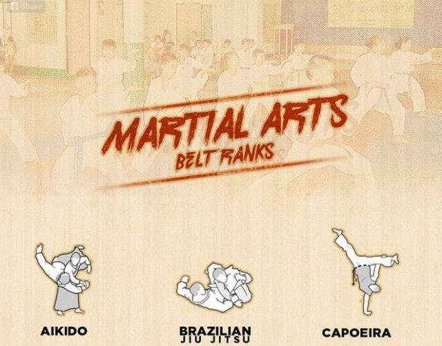 An Infographic Guide to Martial Arts Belt Rankings