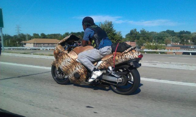 The Strangest Sights Witnessed in Traffic