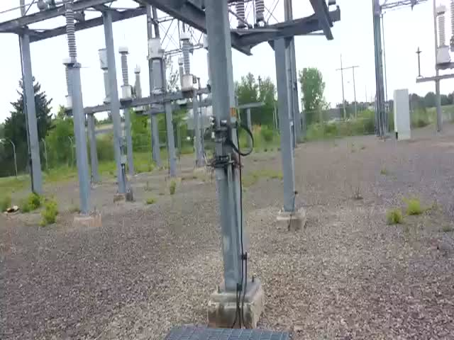 Cute Surprise in a 115,000 Volt Electrical Substation