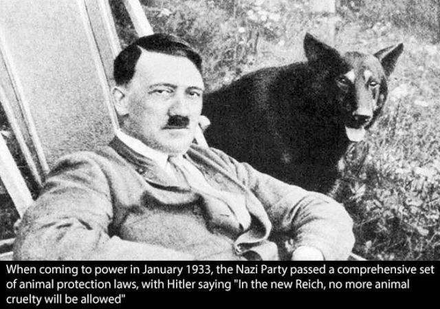 Unexpected Lesser Known Facts about Hitler