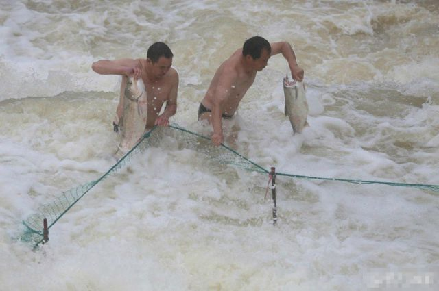 A Big Catch for Locals in China