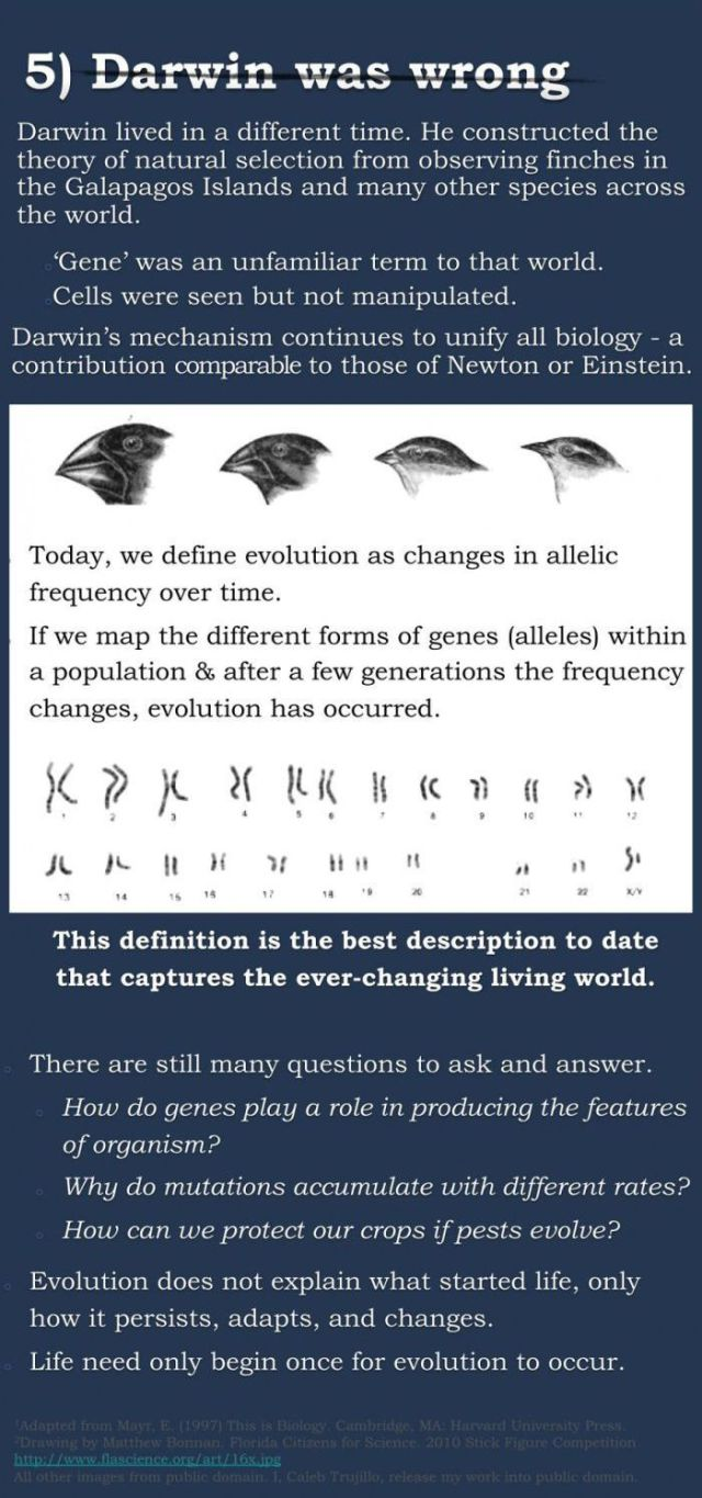 The Big Debate on Evolution Continues