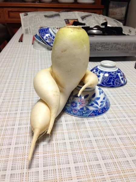 Vegetables That Are Desperately Trying to Be Something Else