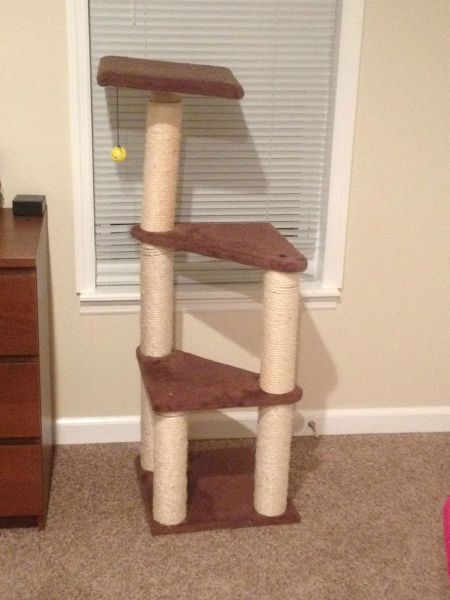 A Custom Made Kitty Tower That Is Every Cat's Dream
