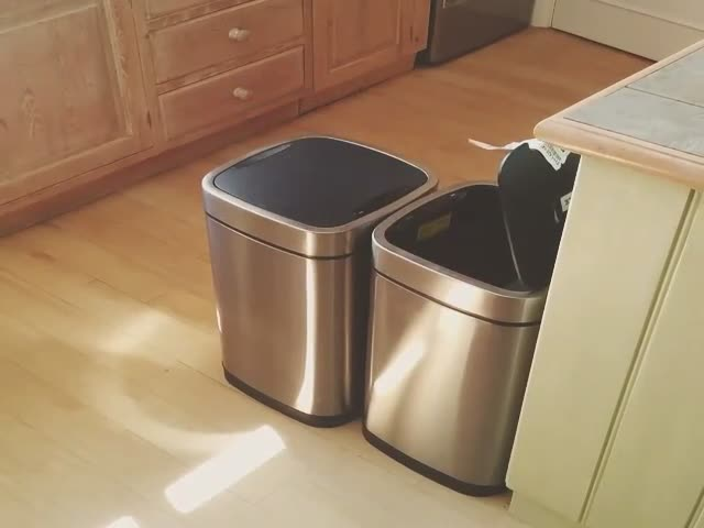Two Motion Detector Trash Cans Stuck in an Infinite Loop  (VIDEO)