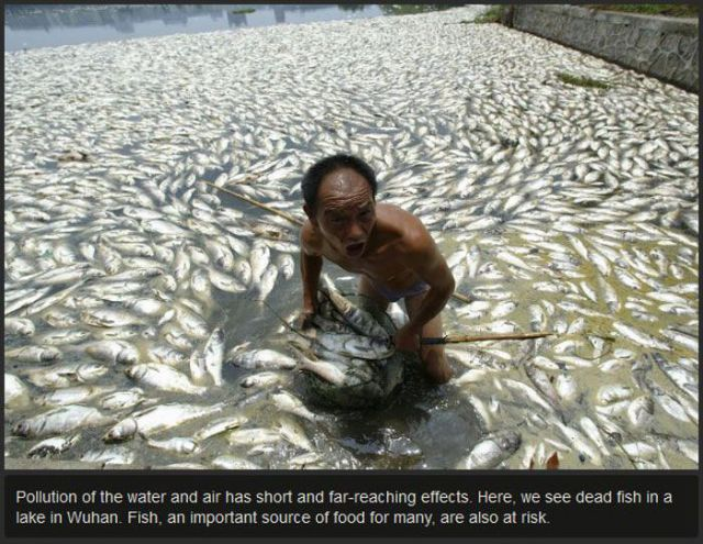 Gross and Dirty Bodies of Water in China