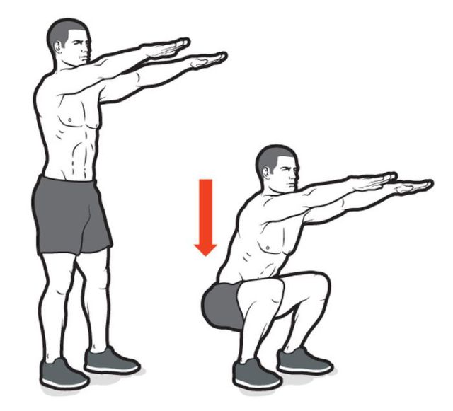 Squat Diagram Body Weight Car Wiring Diagrams Explained