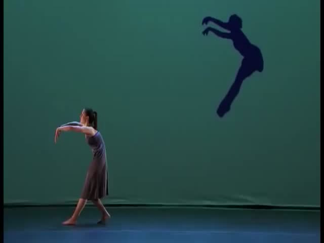 This Shadow Act Is Simply Stunning  (VIDEO)