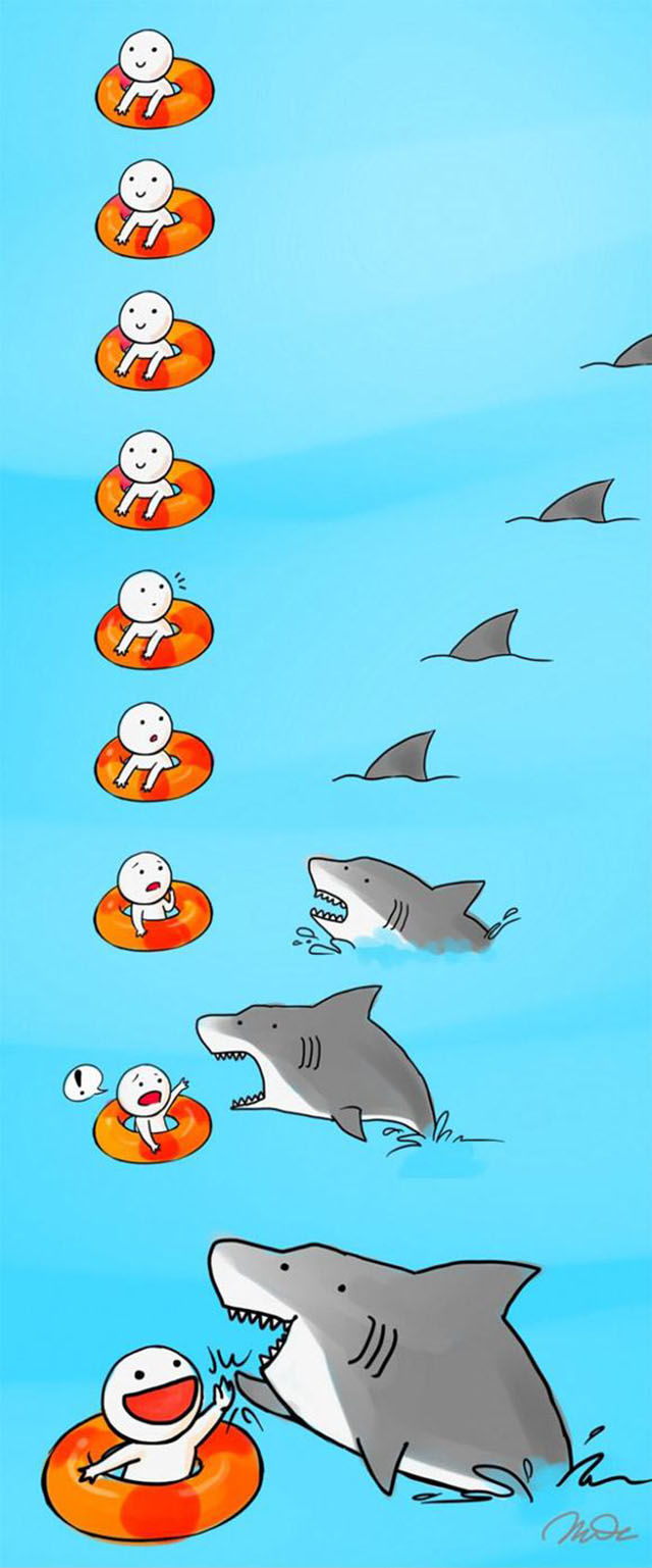 All about Sharks!