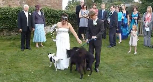 Wedding Moments That Were Suddenly Ruined