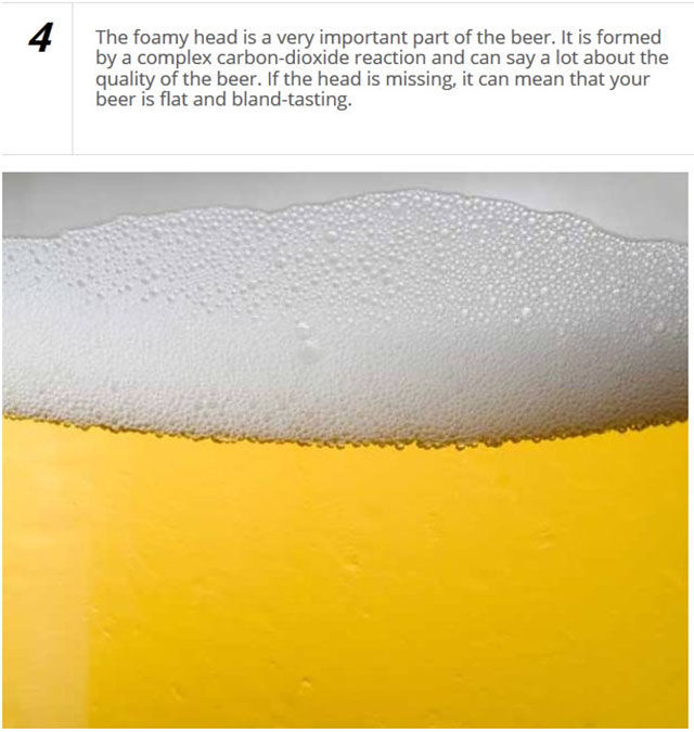 Impress Your Friends with Your Knowledge of Beer