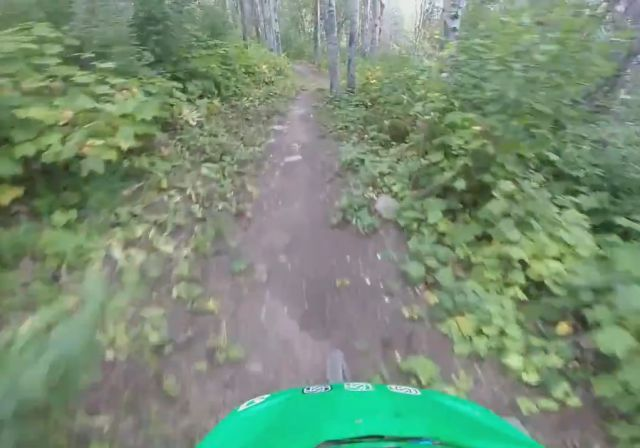 Mountain Biker Has Scary Encounter while Riding through the Woods