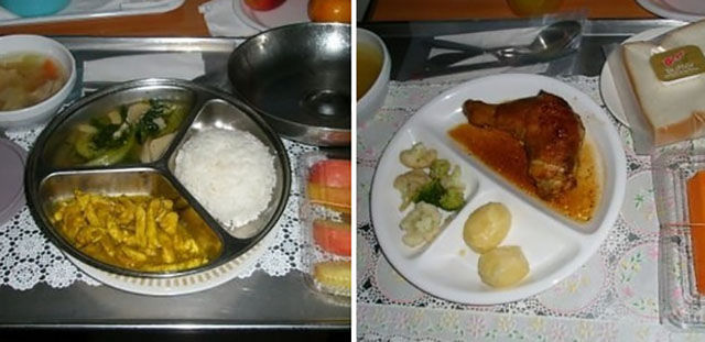 A Variety of Hospital Meals Worldwide