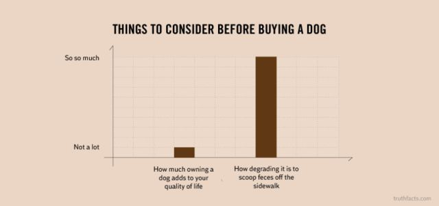 Honest Charts That Will Help You Understand Life's Biggest Questions