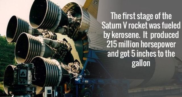 Scientific Facts That Are Beyond Fascinating