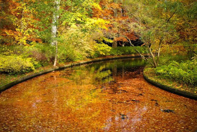 Stunning Photos of Different Places in Autumn