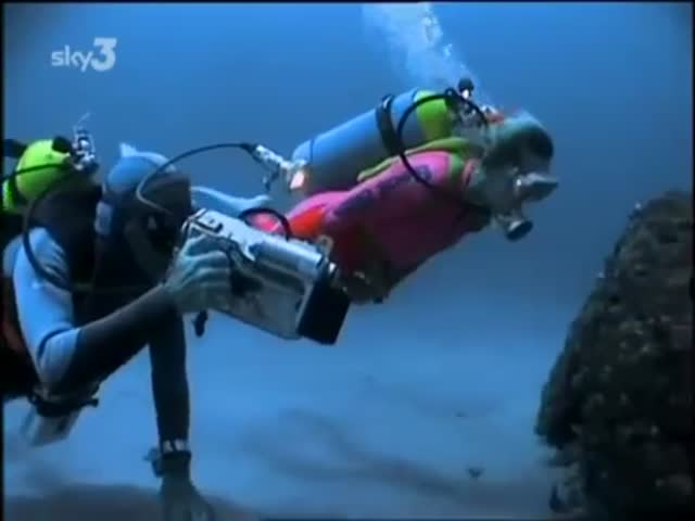 Diver Amazingly Befriends a Moray Eel