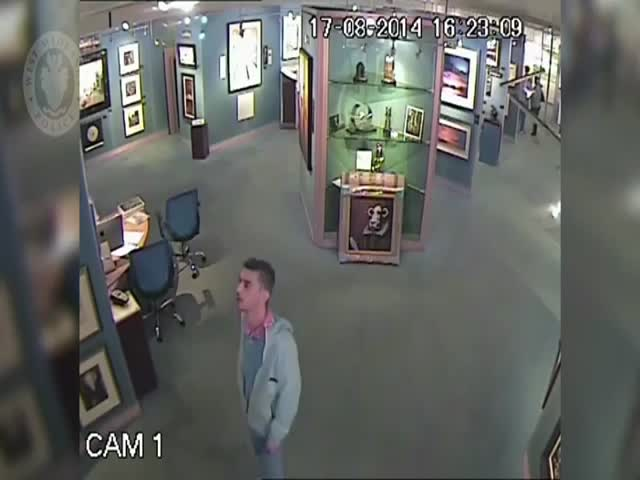 The World's Worst Art Thief  (VIDEO)