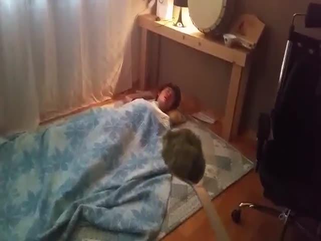 Wasabi Wake Up Prank  (VIDEO)