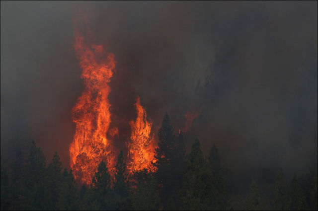 Devastating Forest Fires Wreak Havoc in California