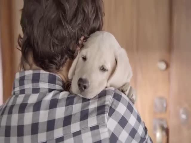 Budweiser's Latest Anti-Drinking and Driving PSA Is Powerful  (VIDEO)