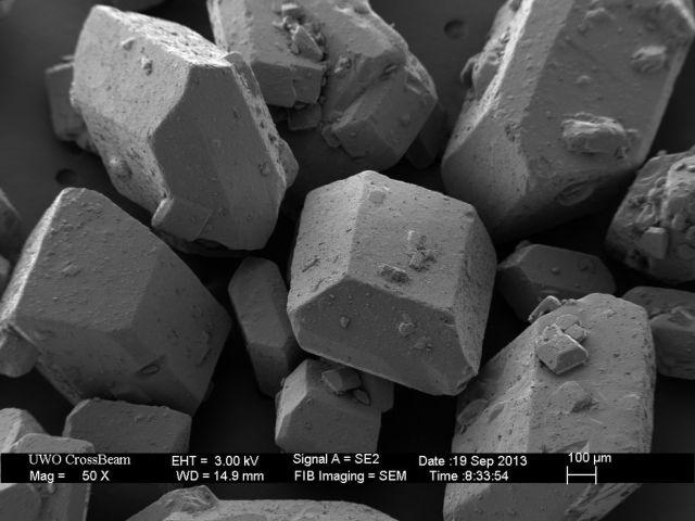 Microscope Images Make Even Normal Stuff Look Strange