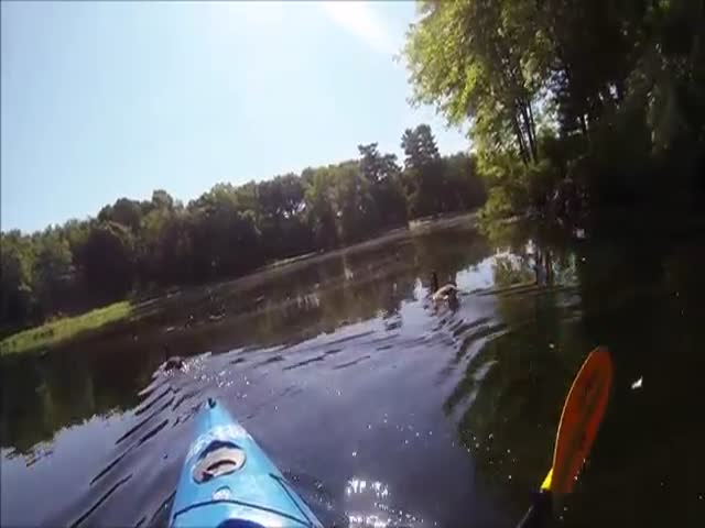 Guy Realized His Life Was Lame After Buying a GoPro  (VIDEO)