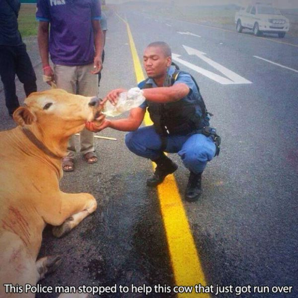 Police Officers Who Epitomise Kindness and Goodwill