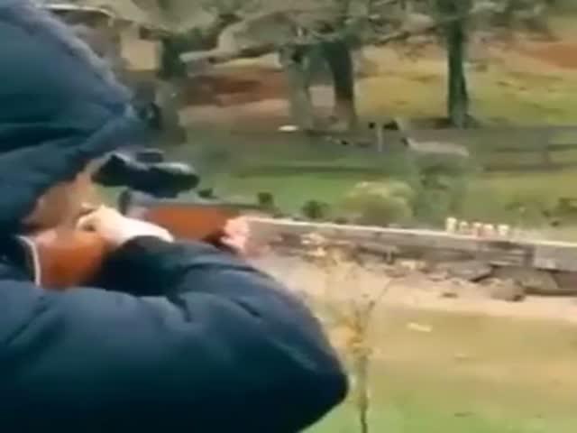 Sniper Level: Expert!