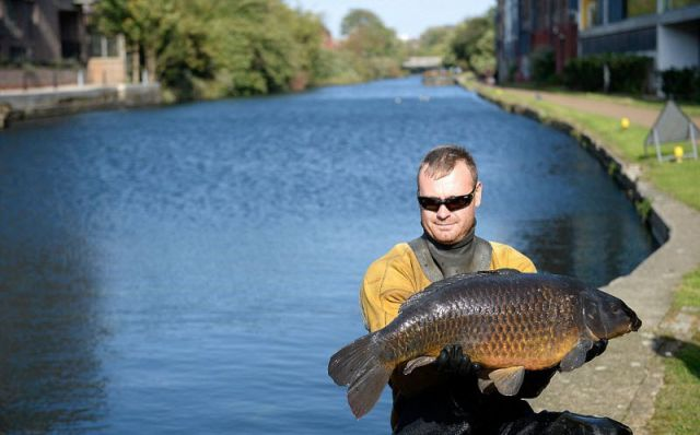 Dirty London Canal Is Also Home to a Giant Carp