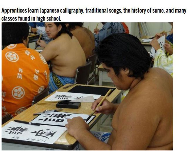 Becoming a Sumo Wrestler Is Harder Than You Think