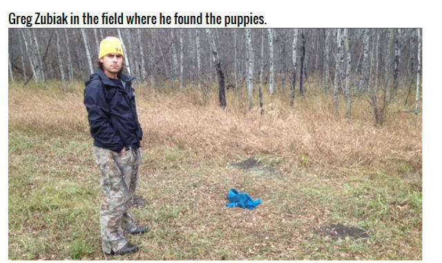 Discovery on a Hunting Outing