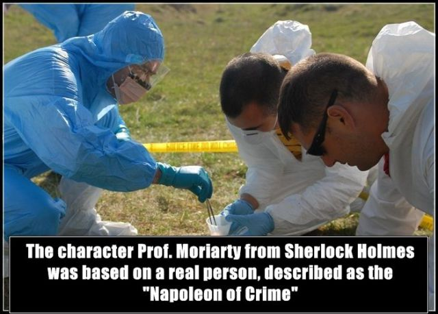 Riveting Facts about Criminal Activity Worldwide