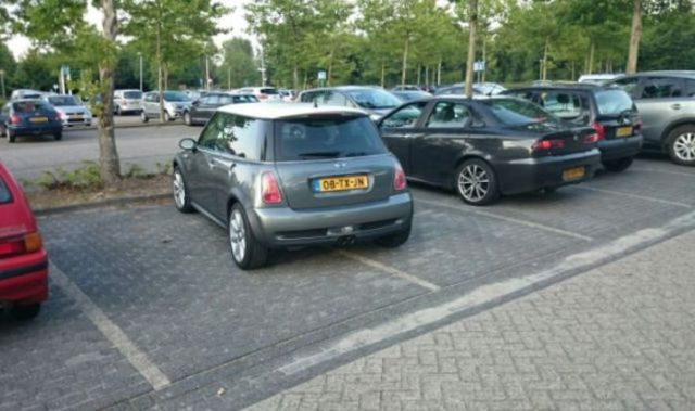 Some People Simply Can't Park