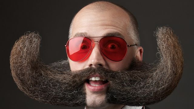"""The Hilarious and Hairy Entries into the """"World Beard and Moustache Championships"""""""
