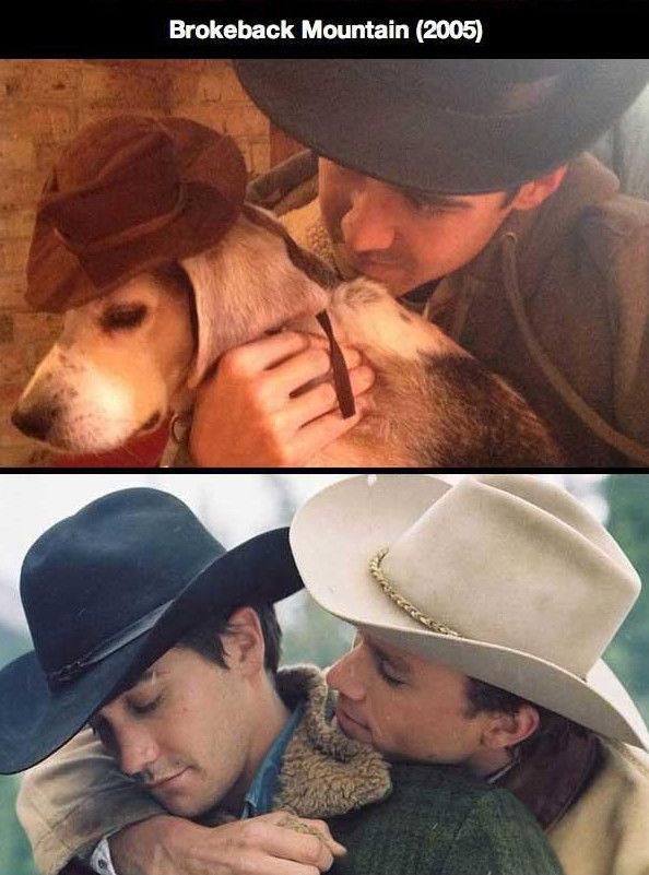 Man and Dog Recreate Romantic Movie Scenes